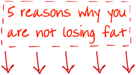 5 Reasons Why You are Not Losing Fat …