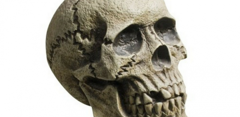 My Skull Is Better Than Your Skull…
